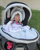 Jul 29, 2010 - first stroller ride