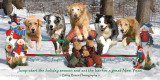 2008 Barry Rosen Photography holiday greeting