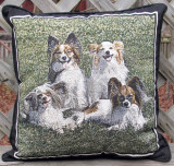 Bair pillow