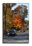 Drive By ColorNovember 5