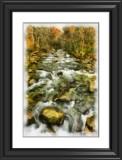 313Little Pigeon River