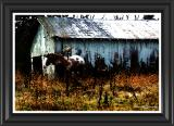 Clark Farm (Watercolor)