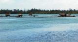 Fish traps in Huahine lagoon