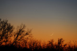 Crescent Moon & Mercury