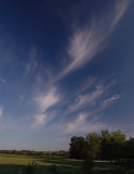 Cirrus Formations with Moon
