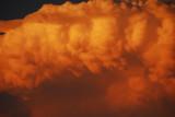 Monster Sunset Storm Knuckles