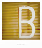 b copy.jpg