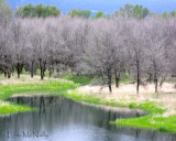 Landscapes & Scenery