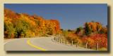 Boreal Desert