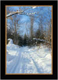 Quebec Sleigh Trail