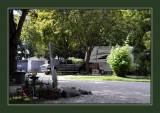 Scottie's RV Park & Campground 4