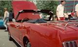1966 Mustang SHOPONY