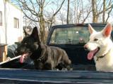 Rudy & Toby