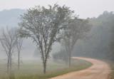 Pastoral Lane