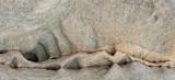 Sandstone Free Form