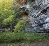 Canyon Alcove, Autumn