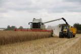On the Farm 2010..........