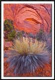 Glowing Sandstone of Longs Canyon