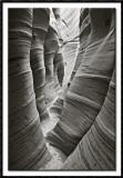 Zebra Slot Canyon in Monochrome