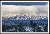 Wintry Mingus Mountains