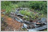 Old Cabin Site-02.jpg