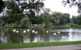 The Festival theatre faces a lake of swans and ducks
