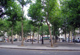 View of Place Monge from rue Gracieuse