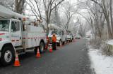 Ice Storm December 2008