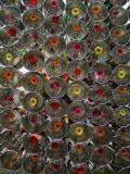 Girona, 2006 flower Time Festival