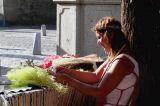 Diademas de flores Secas