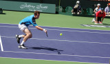 andy murray volley