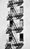 fire escapes and windows