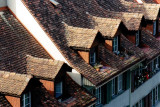 title roofs