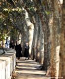 nuns on walk