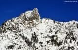 Lion of Greider Peak