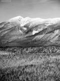landscape in Western Washington