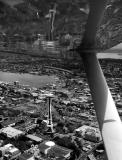 lake union and needle, downtown seattle