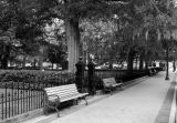 benches in Christ Church
