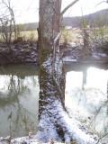 Snow at Brushy Fork River