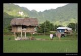 7945 Vietnam, Mai Chau, pile dwelling