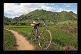 7877 Vietnam bike along the way