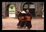 8451 Vietnam, nuns