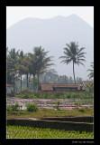 3177  Indonesia, Cangkuang lake