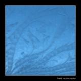 0415 ice flowers