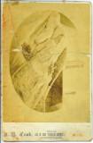 Toronto Ontario Canada Circa 1880