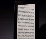 Kindle e-Ink reader (not Paperwhite) with  Reading Immersion - Lines highlighted while listening via Audible