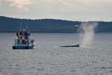 New Brunswick 7-2010
