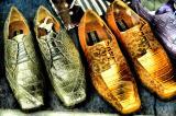 April 25- Animal Shoes