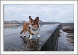 A Wet Walk