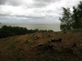 Cleared forest and the Curonian Lagoon